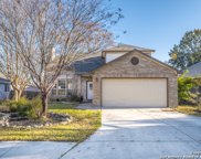 1176 Berry Creek Dr, Schertz image