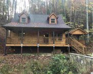 3442 Maddox Cemetery Rd, Sevierville image
