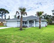 1403 Travelers Palm Drive, Edgewater image