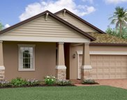11414 Freshwater Ridge Drive, Riverview image