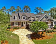 316 Bay Hill Court, Shallotte image