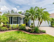 10413 Edgefield Place, Tampa image