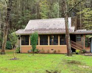 235 Gold Miners Rd, Tellico Plains image