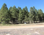 CR 1020 Tract 1, Greer image