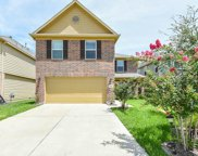 18110 Dardanelles Court, Houston image