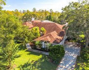 3224 Harvest Moon Drive, Palm Harbor image