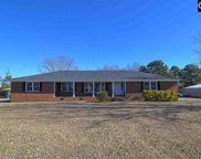 2109 Wessinger Road, Chapin image