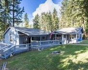 4547 E Deer Lake, Loon Lake image