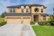 3971 Blossom Dew Drive, Kissimmee image