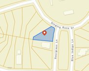 2809 Sourgrass Ln., Myrtle Beach image