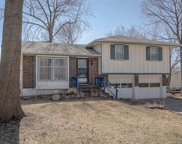 1303 Blueberry Drive, Harrisonville image