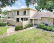 11822 Wildeflower Place, Temple Terrace image