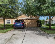 4309 Ashton Meadows Way, Wesley Chapel image