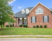 3006 Fitzroy Ct, Spring Hill image