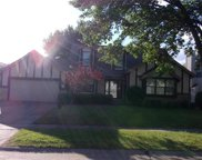 3007 Fireweed, Florissant image