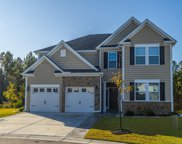111 Yaupon Holly Circle, Summerville image