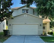 17442 Sandgate Court, Land O' Lakes image