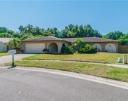 3288 Tern Way, Clearwater image