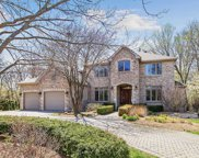 16060 Wildwood Lane, Homer Glen image