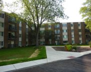 140 West Wood Street Unit 315, Palatine image