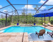 10157 Silver Maple  Court, Fort Myers image