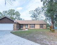 10006 Albyar Avenue, Riverview image