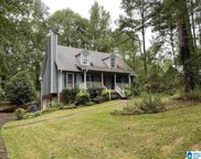 119 Country Cove Drive, Chelsea image