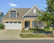 1733 Tailed Hawk  Way, Fort Mill image
