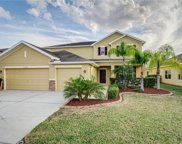 31516 Holcomb Pass, Wesley Chapel image