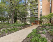 6010 Oakwood Drive Unit 2L, Lisle image
