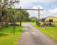 15950 Sam C Road, Brooksville image