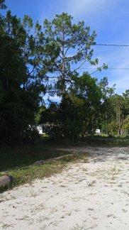 11291 42nd Road N, West Palm Beach image