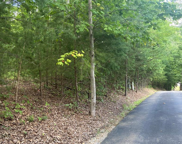 Redtail Rd, Sevierville image