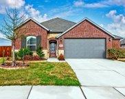 1404 Macaw Court, Little Elm image