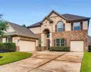 23318 Robinson Pond Drive, New Caney image
