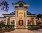 1348 Preservation Way, Oldsmar image