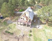 445 Annie Dr, Oneonta image
