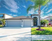 4808 Diamonds Palm Loop, Wesley Chapel image