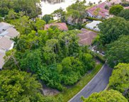 15371 Royal Fern Ln N, Naples image