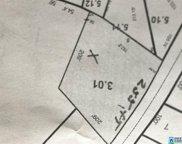 183 Main St Unit vacant lot, Springville image