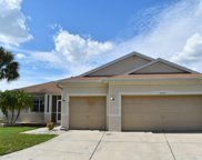 11032 Stone Branch Drive, Riverview image
