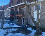 1175 Valley Lane Unit #202, Hoffman Estates image