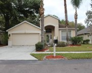 4607 Dunnie Drive, Tampa image