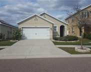10610 Whispering Hammock Drive, Riverview image