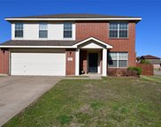 10421 Bear Hollow Drive, Fort Worth image