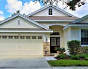 6124 Gannetwood Place, Lithia image