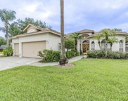 28729 Crooked Stick Court, Wesley Chapel image