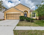 919 Grand Canyon Drive, Valrico image