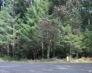 11215 Greenwood Dr, Anderson Island image