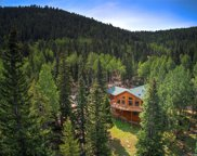32123 Christopher Lane, Conifer image